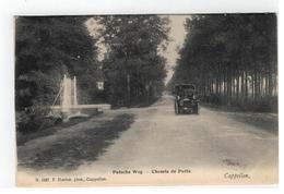Kapellen Cappellen  Putsche Weg - Chemin De Putte N.1497 F. Hoelen.phot.  Cappellen 1905 - Kapellen