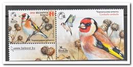 Wit Rusland 2018, Postfris MNH, Birds - Wit-Rusland