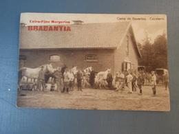 Cpa Camp De Beverloo. Cavalerie. Extra-Fijne Margarine BRABANTIA - Leopoldsburg (Camp De Beverloo)