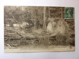 Le Bois De Vincennes Après Le Terrible Cyclone De Juin 1908 - Parcs, Jardins