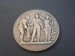 Belle Médaille ROBVR HYGIA PRO PATRIA Bronze Argenté C.DEGEORGE - Other