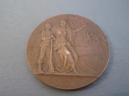 Médaille  SI.VIS.PACEM.PARA BELLVM PRO.PATRIA. Préparation Militaire Bronze - France