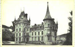 NISMES Le Château Construit Par La Famille LICOT En 1860. - Couvin