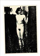 Photo Carte Erotique Marque Argenta - Fine Nudes (adults < 1960)