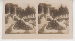 SU 018 / Photos Stéréoscopiques  - ESPAGNE - BARCELONA  , Parque GUELL.ESCALINATA - Stereoscopio