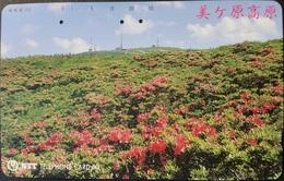 Telefonkarte Japan - Landschaft - 270-146 - Japan