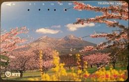 Telefonkarte Japan - Landschaft - 431-106 - Japan