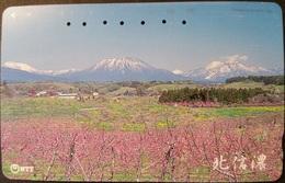 Telefonkarte Japan - Landschaft - 271-246 - Japan