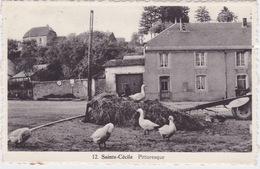 Sainte-Cécile, Pittoresque. - Autres