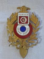 I111 - 14 - Badge émaillé - République Française - Tunisie - Grand Conseil. En Vigueur Sous Le Protectorat - Frankrijk
