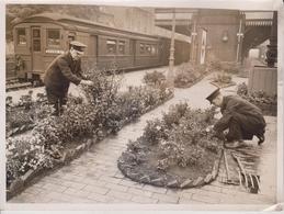 STATION GAEDENS THAT WON FIRST PRICES  METROPOLITAN RAILWAY WEST HAMPSTEAD CHESHAM  Fonds Victor FORBIN (1864-1947) - Trenes