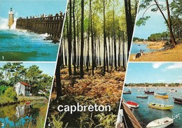 40 Capbreton Divers Aspects (2 Scans) - Capbreton