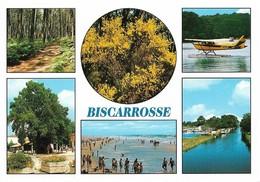 40 Biscarrosse Divers Aspects (2 Scans) - Biscarrosse