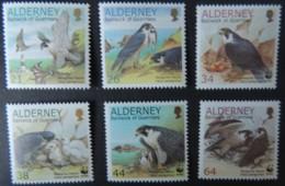 ALDERNEY 2000 ENDANGERED SPECIES PERGRINE FALCON 6 VALUES MNH A140-A145 BIRDS OF PREY - Alderney