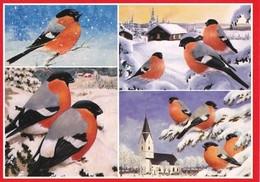 Birds - Bullfinches In Winter Landscape - Jan Bergerlind - Noël