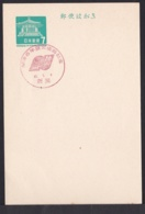 Japan Commemorative Postmark, 1967 Niigata Port Earthquake (jci1718) - Ungebraucht