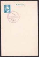Japan Commemorative Postmark, 1967 Swim Championships (jci1754) - Ungebraucht