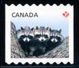 Canada (Scott No.2506 - Courant / Raton Laveur / Racoon / Definitives 2012) [**] (P) - 1952-.... Règne D'Elizabeth II
