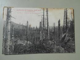 MEURTHE ET MOSELLE LA GUERRE EN LORRAINE 1917-1918 LA CHAPELOTTE LA MORT DES ARBRES PAR LES OBUS ASPHYXIANTS - France