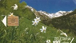TELETARJA  100 UNITATS D'ANDORRA.... - Andorre