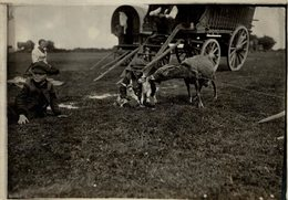 EPSON DOWN THE DERBY  GIPSIES GYPSY GITANO GIPSY TSIGANE    Fonds Victor FORBIN (1864-1947) - Fotos