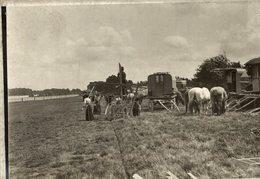A GIPSEE CAMP    GIPSIES GYPSY GITANO GIPSY TSIGANE    Fonds Victor FORBIN (1864-1947) - Fotos