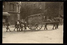 ATTELAGE   NIÑOS KIDS   Fonds Victor FORBIN (1864-1947) - Fotos
