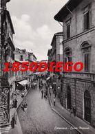 CATANZARO  - CORSO MAZZINI  F/GRANDE VIAGGIATA 1953 ANIMAZIONE - Catanzaro