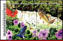 Ref. BR-2975 BRAZIL 2005 - SPAWNING, FLOWERS,, BIRDS, WATERFALLS, S/S MNH, FISH 1V Sc# 2975 - Poissons
