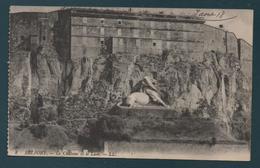 BELFORT - Le Château Et Le Lion - Belfort – Le Lion