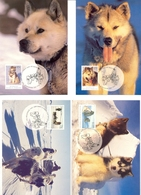 Antarctique Australien - 1998 - Yt 98/101 - Derniers Attelages De Chiens De Traîneaux - En Cartes Maximum - Cartoline Maximum