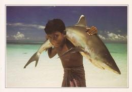 Maldives Islands Maldives Requin à Ponte Blanche (trou De Punaise) - Maldives