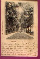 NIVELLES « Avenue Du Parc » - Ed. Papeterie Godeaux, Nivelles (1902) - Nijvel
