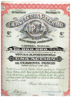 Titre Ancien - Cerveceria Palermo Sociedad Anónima - Titulo De 1926 - N°052256 - Industrie