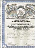Titre Ancien - Cerveceria Palermo Sociedad Anónima - Titulo De 1926 - N°059737 - Industrie