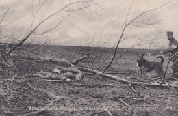 AK Sanitätshund - Weltkrieg 1914-18