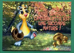 Humour Marmotte La Cueillette Champignons, Panier En Osier ( Champignons, Funghi, Grzyby, Pilze, Hongos, Mushrooms   ) - Mushrooms
