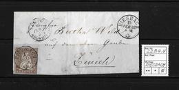 1854-1862 Helvetia (Ungezähnt) Strubel → 1862 Brief RIESBACH Nach Zürich   ►SBK-22B4.IV◄ - Covers & Documents