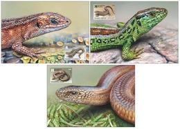 Belarus 2018 - Reptiles. Lizards. Maxicards. Maximum Card. Lizard Lézard Eidechse, Lucertola. Biélorussie/Weissrussland - Bielorussia