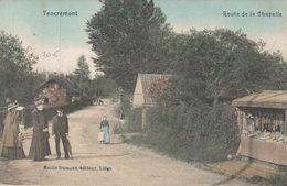 Tancrémont- Route De Le Chapelle - Vue Colorisée - Vue Animée - E.Dumont - 2 Scans - Theux