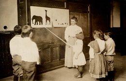 SCHOOL LESSON ANIMAL PHOTOS NIÑOS KIDS   Fonds Victor FORBIN (1864-1947) - Fotos