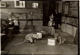 NURSERY RHYMES  LONDON PHE PIED PIPER  SCHOOL Larning Escuela  NIÑOS KIDS   Fonds Victor FORBIN (1864-1947) - Profesiones