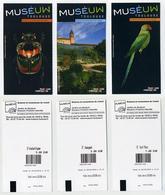 Lot De 3 Tickets Illustrés - Museuw - Musée D'Histoire Naturelle De Toulouse. Ara Parrot Perroquet Papagei - Tickets D'entrée