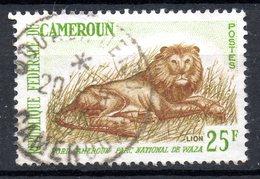 CAMEROUN. N°351A Oblitéré De 1964. Lion. - Roofkatten