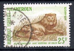 CAMEROUN. N°351A Oblitéré De 1964. Lion. - Kamerun (1960-...)