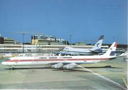 LAP Lineas Aereas Paraguayas DC8-61F  ZP-CCR At Frankfurt - 1946-....: Era Moderna