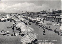 Marina Di Massa - La Spiaggia - Massa