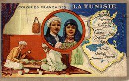 CHROMO LION NOIR COLONIES FRANCAISES LA TUNISIE - Chromos