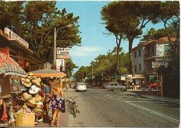 MARINA DI MASSA - Viale Delle Pinete - Camping - Massa