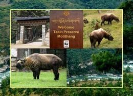 Bhutan Takin Preserve Motithang New Postcard - Butan